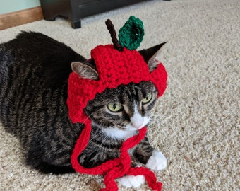READY TO SHIP Apple Cat Hat (multiple color choices)