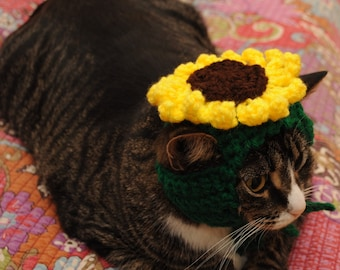 READY TO SHIP Sunflower Cat Hat- Hats for Cats- Clothes for Cats