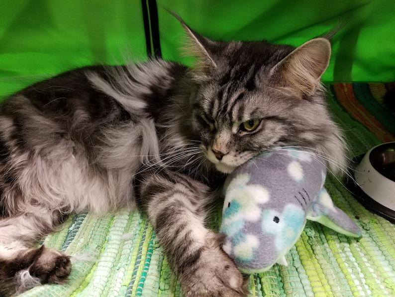 Phat Cat's Kickin' Shark handmade cat toys catnip image 0