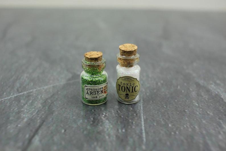 Fairy Garden Miniature Halloween Toxic Tonic and Arsenic image 0