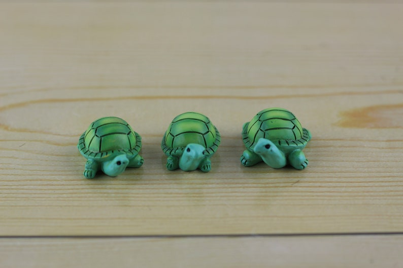 Fairy Garden Miniature Turtles Set of 3 succulent terrarium image 0