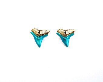 Aqua shark teeth studs