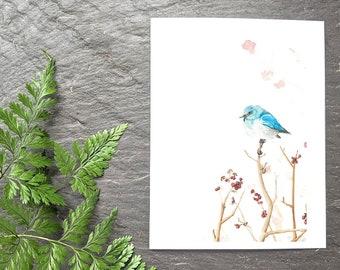 Bluebird note card - bird stationary -greeting card
