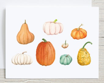 Fall Pumpkins Note Card, Card set 4 or 8, Autumn Watercolor Stationary set, Pumpkin Varieties, Card with Envelopes, Folded Blank Note Cards
