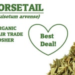 Organic HORSETAIL herb - SHAVEGRASS, Equisetum arvense, shavetail grass, dried bulk herbs, Bottle Brush, Cavalinha, Equiseti Herba, toadpipe