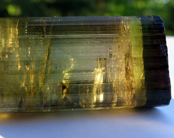 56.6 gram Gem Bi-color Black cap Tourmaline Himalaya Mine, Mesa Grande, California USA.