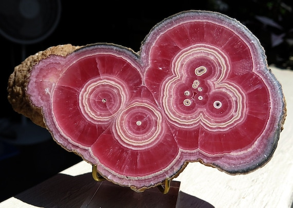 Ultra quality full thick edge slice Blood Red Rhodochrosite. Classic from Old time long gone Capillitas, Argentina. 6 inch. None finer