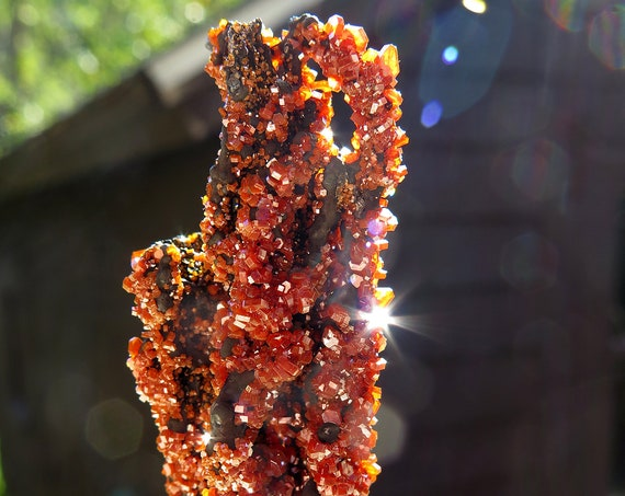 Old stock Vanadinite on Goethite Stalactite. Mibladen, Khenifra Province, Morocco 2.9 inch tall. 39.6 grams
