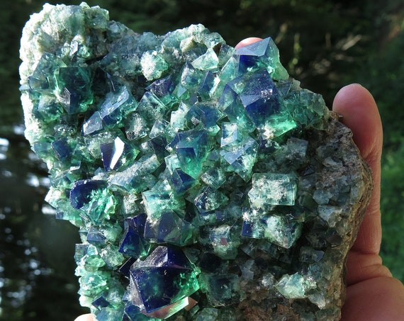 Color change Fluorite. Diana Maria mine, Waredale, Co. Durham, U.K. 5.5 inch tall. Stands nicely