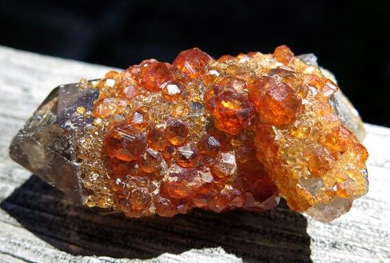 """Gemmy Spessartine Garnet on and inside smoky quartz. Tongbei, Fujian Prov. China. 2.24"""". 47.3 grams"""