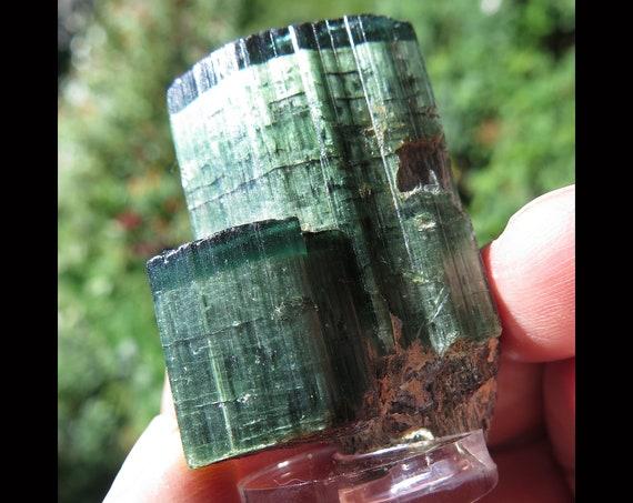 Super cats eye tourmaline. Top bright green cap. Pederneira mine. Sao Jose da Safira, Minas Gerais, Brazil 39.1 grams with small base