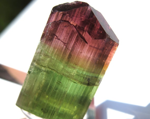 Gem bi-color Tourmaline 11.6 grams. Barra da Salinas, Coronel Murta, Brazil. Great color and transparency