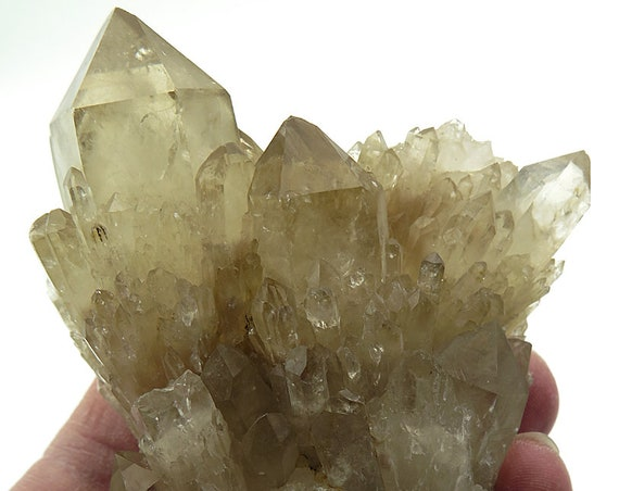 A wonderful 252.8 Gram Natural Citrine Fan Cluster. 4 inches tall. Congo