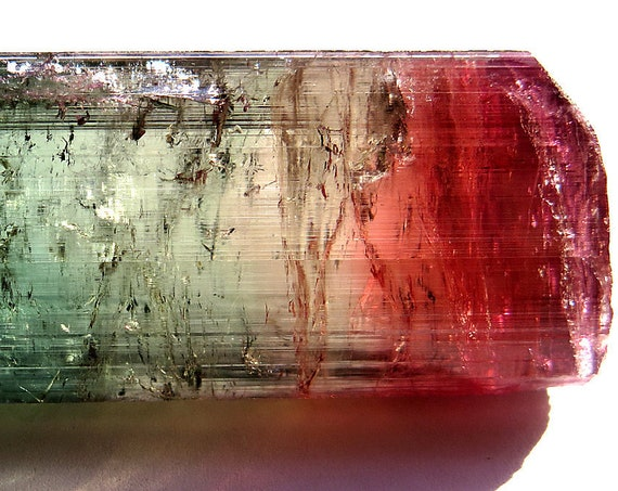 Investment Grade 44.3 Gram Three Color, Highly transparent Gem Tourmaline. Cruzeiro mine Brazil. USA SALES ONLY