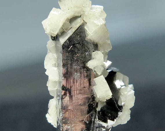 Scarce form of Twined Crystallized Galena with Dolomite. Big Bear Orebody, Fletcher Mine, Missouri, USA