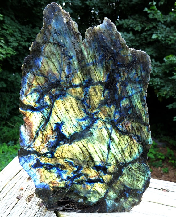 A High quality Labradorite showpiece with 100% flash of gold and blue. 11 by 7 by 4 inches deep. Madagascar 10.5 pounds