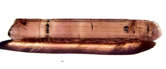 13.5 Carat Gem Tourmaline from Baixão claim, Taquaral, Itinga, Minas Gerais, Brazil