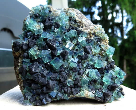 Excellent large color change Fluorite and Galena from Heavy Metal Pocket. Diana Maria mine, Waredale, Co. Durham, U.K. 3x3 inch