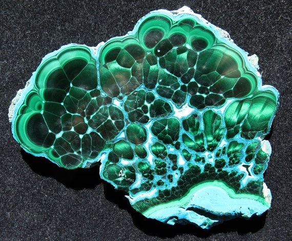 Chrysocolla with Malachite polished Slice, Congo 4.9 inch
