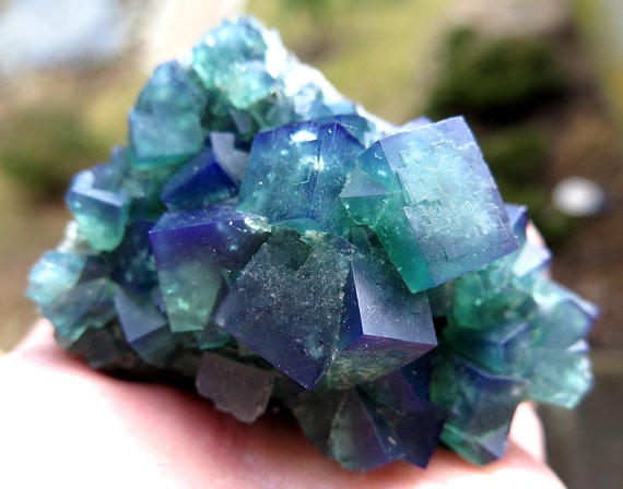 3 Inch Color change Fluorite from Wolfie Pocket, Rogerley Mine, Frosterley, Weardale Co. Durham, England