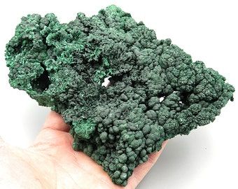 Large 8 inch Natural Silky Malachite rough. Congo