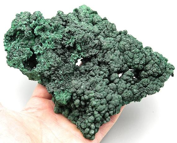 Large 8 inch Natural Silky Malachite rough. Congo