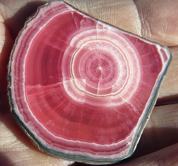 Top 27.3 Gram Blood Red Rhodochrosite Slab with Intact Edge all Around. Not a Piece of a stalactite a full slice