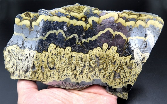 Large 7 inch by 4 inch Sphalerite Var. Shalenblende with Galena, Marcasite. Known to some as Baryte. Note the beauty large silver areas