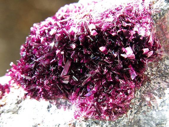 Erythrite Crystal Cluster on Matrix Bou Azzer, Morocco