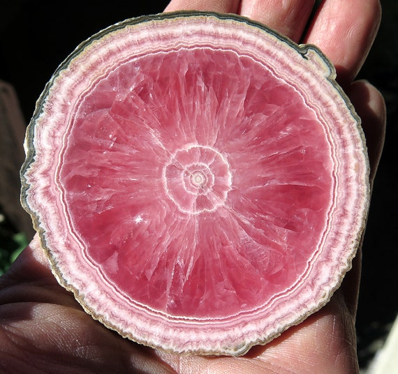 Highest quality Rhodochrosite slice. Offering a dead on perfect 3 3/8 across full edge round Polished 2 side. No chips no cracks