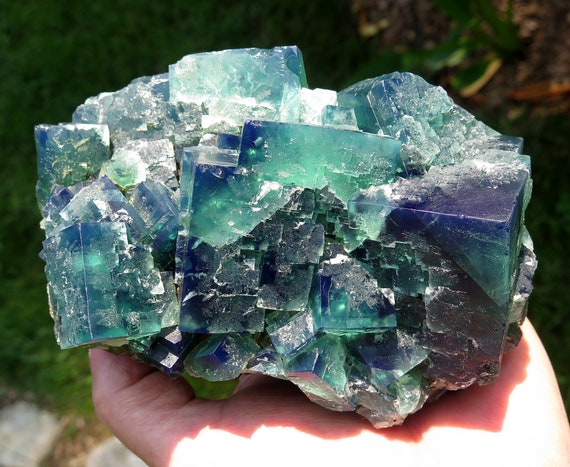 Large cabinet Color change Fluorite. Truffle Pig Pocket, Diana Maria mine, Frosterley, Weardale County England. 5.5 inch, 2 pound 12.7 ounce