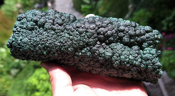 Large 3.6 pound Shimmering Malachite Stalactite section. Katanga, Congo. 7.25 inch across. You need to see the video