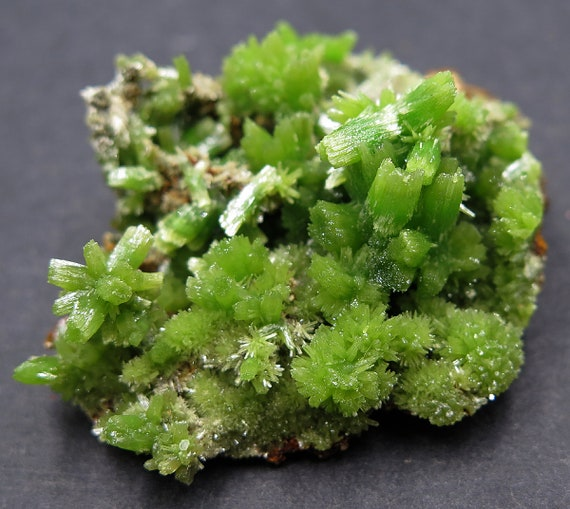 Doesn't get much better... A gemmy garden of Pyromorphite Crystal cluster. So fine. Daoping Mine, Guangxi, AR, China.