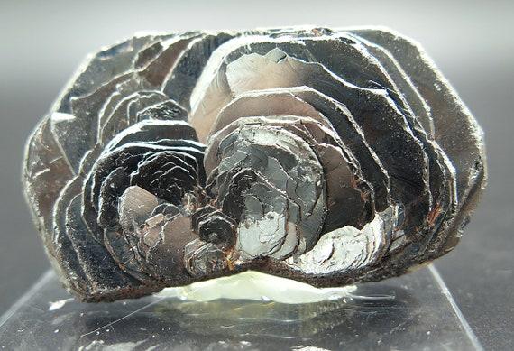 A Quality Hematite Iron Rose, Ouro, Preto, Minas Gerais, Brazil