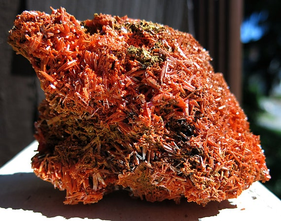 Large 12.5 cm Crocoite, Red Lead Mine, Dundas, Tasmania