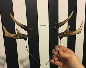 Natural Double Antler Headband - Set 2