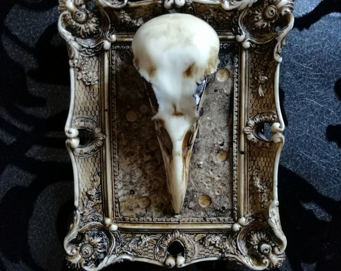 Macabre Mini Wall Art Crow Skull Frame - READY MADE