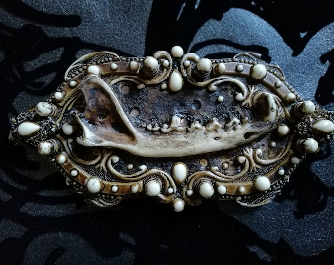 Macabre Mini Wall Art Fox Jaw Frame