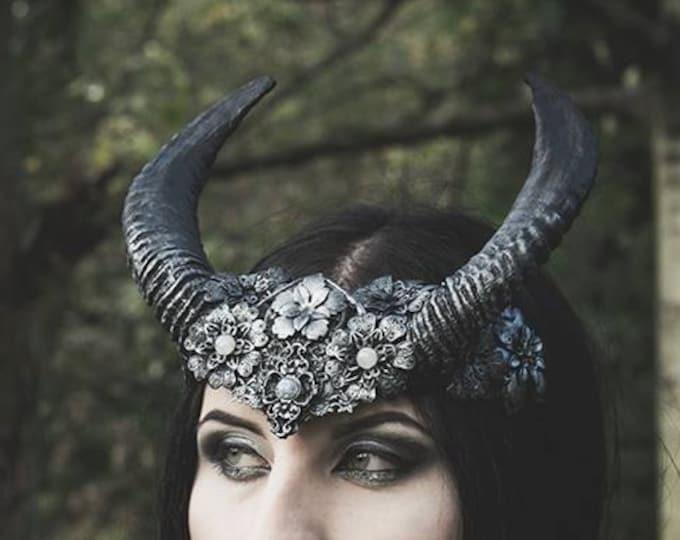 Elegant Black Horned headdress