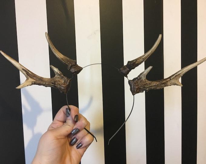 Natural Double Antler Headband
