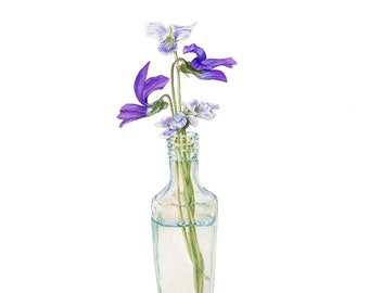 White and purple violets in glass bottle watercolor print