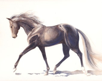 Dark / Black Horse watercolor painting illustration print