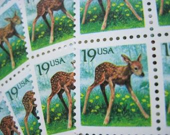 Unused 1991 Newborn Baby Fawn White Tailed Deer - Vintage Postage Stamps Number 2479