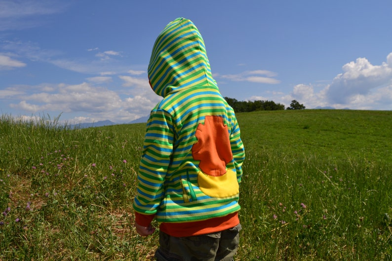 green  spring stripes made to order Lion hoodie reversible