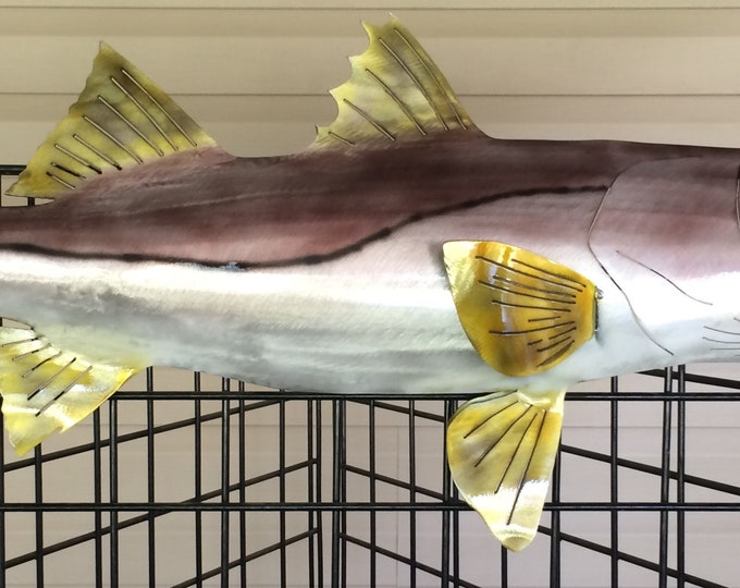Featured listing image: Common Snook