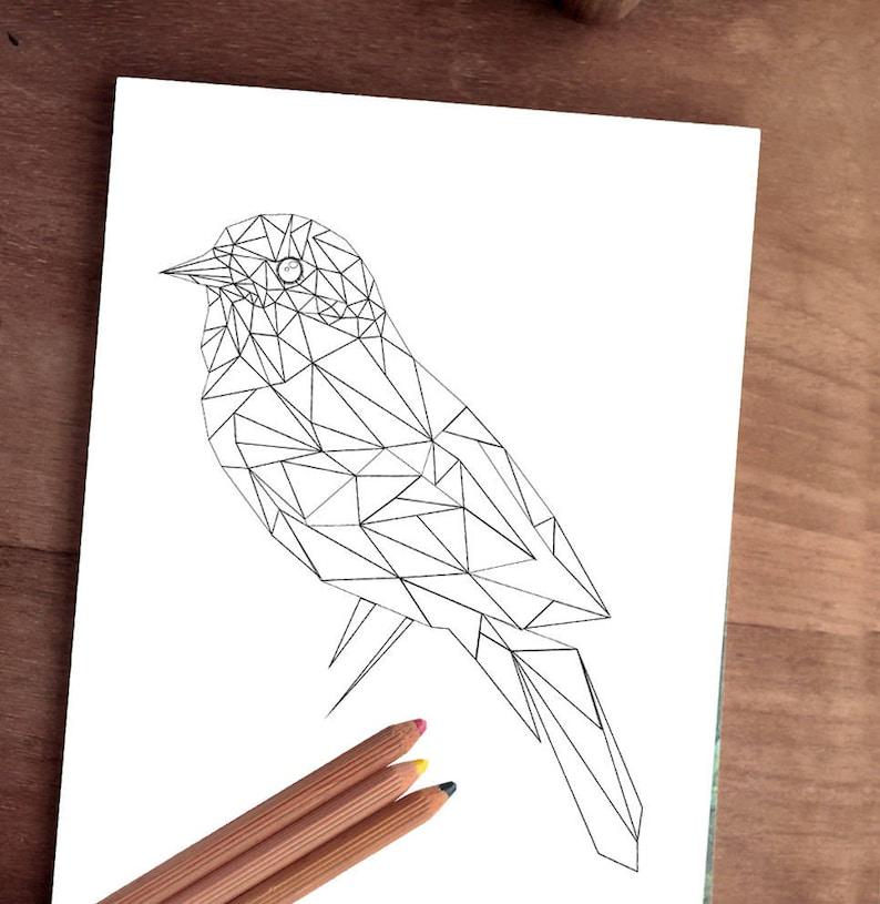 Kleurplaten Dieren Vogels.Dieren Kleurplaten Pagina Volwassen Kleurplaat Digitale Vogel Etsy