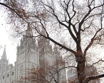 Landscape Photography - Winter In Salt Lake City, Utah - Nature, Winter, Snow, Travel, Church, Metropolitan, Urban,  Fine Art Photography