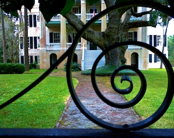 Travel Photography - Beaufort Beauty - South Carolina, Southern, Architectural, Nature, Landscape, Fine Art Photography