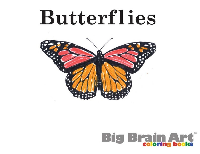 Butterflies Coloring Book 10 pages   Etsy
