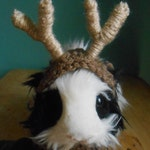 Guinea Pig Antler Hat, Ferret , Hamster, Bearded Dragon Antlers, Pet Halloween Reindeer Antlers Costume,, Tiny Pet Outfit
